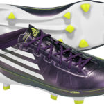 F50_chameleon_low_res